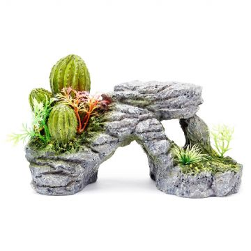 Pet Ting Cactus and Rock Ornament
